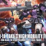 HG Origin Zaku II Gaia Mash